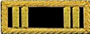 U.S. Shoulder Boards, Captain's