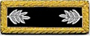 U.S. Shoulder Boards, Lieutenant Colonel