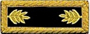 U.S. Shoulder Boards, Major